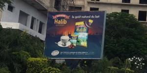 Halib